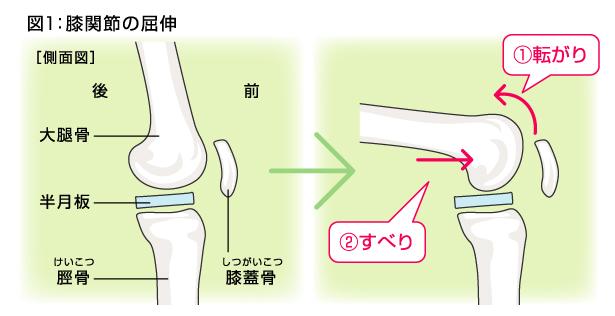 膝の運動.jpg